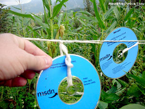 Microsoft MSDN software disk scarecrow in cornfield