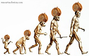 human evolution detailed chart: The evolution of the primate newstechnica